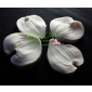 Dogwood Petal Veiner Set Large By Simply Nature Botanically Correct Products