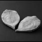 Rose Leaf Botanically Correct Veiner (Large)