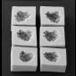 Blackberry Fruit Mold Botanically Correct Set (Medium)