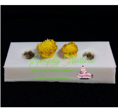 Cosmos Center Mold Veiner Set By Simply Nature Botanically Correct Products
