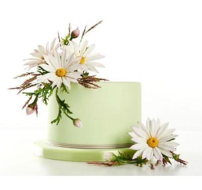 Gastworkshop Alan Dunn - Wild & Garden Flowers